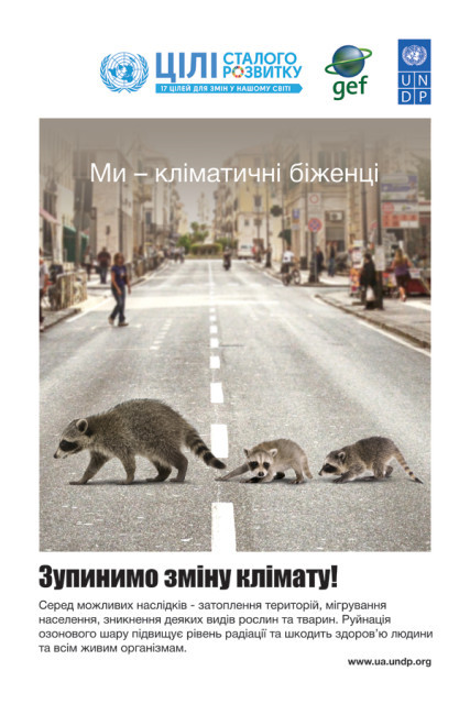 racoon_preview-427x640